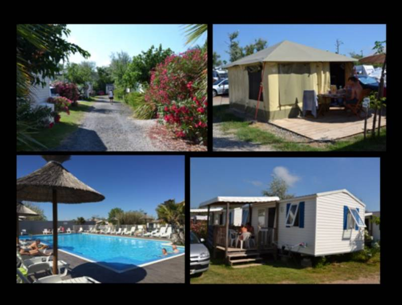 Camping cap d 39 agde camping piscine mobil home 34 for Piscine pepiniere